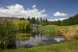 The Shed and Pond, Northburn Vineyard, Central Otago, South Island, New Zealand Photographic Print by David Wall