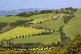 Famous Road Winding Through the Tuscan Hillside, Italy Photographic Print by Terry Eggers