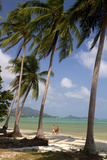 Beach, Palm Trees and the Gulf of Thailand on the Island of Ko Samui, Thailand Photographic Print by David R. Frazier