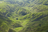 Green Valleys and Farmland, Near Ohariu, Wellington, North Island, New Zealand Photographic Print by David Wall