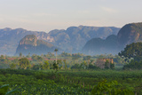 Limestone Hill, Farmland, Vinales Valley, UNESCO World Heritage Site, Cuba Photographic Print by Keren Su