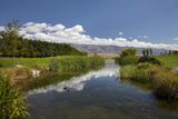 Pond at Northburn Vineyard, Central Otago, South Island, New Zealand Photographic Print by David Wall