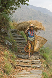 Local Woman Follows a Trail Carrying a Basket Called a Doko, Annapurna, Nepal Photographic Print by David Noyes