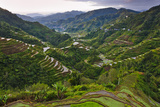 Rice Terraces, Agriculture, Philippine Cordilleras, Banaue, Ifugao, Philippines Photographic Print by Keren Su