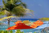 Umbrellas and Shade at Castaway Cay, Bahamas, Caribbean Papier Photo par Kymri Wilt
