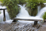 Bench in Water, Plitvice Lakes, Plitvicka Jezera, Croatia Photographic Print by Martin Zwick