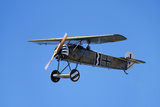German WWI Fokker D-8 Fighter Plane, War Plane Photographic Print by David Wall