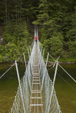 Footbridge, Waikaia River, Piano Flat, Waikaia Valley, South Island, New Zealand Photographic Print by David Wall