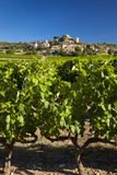 Vineyard, Hilltop Village of Jocas in the Luberon, Provence, France Photographic Print by Brian Jannsen