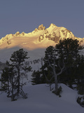 Sunrise on Mt Reichenspitze Mountain Range, Hohe Tauern National Park, Mt Gabler, Austria Photographic Print by Martin Zwick