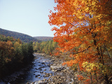 North Fork of the Potomac River, Potomac State Forest, Maryland, USA Photographic Print by Adam Jones
