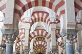 Catedral Mosque of Cordoba, Interior, Cordoba, Andalucia, Spain Photographic Print by Rob Tilley