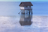A Small Fishing House in the Water, Bohol Island, Philippines Photographic Print by Keren Su