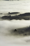 Fog over Otago Harbour and Otago Peninsula, Dunedin, South Island, New Zealand Photographic Print by David Wall