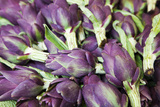 Artichokes in Mass at Venice Farmers Market, Italy Photographic Print by Terry Eggers