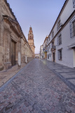 Catedral Mosque of Cordoba, Bell Tower, Cordoba, Andalucia, Spain Photographic Print by Rob Tilley