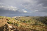 Konso Village, Rift Valley, Ethiopia, Africa Photographic Print by Martin Zwick