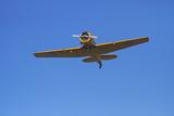 North American Harvard, or T-6 Texan, or SNJ, War Plane Photographic Print by David Wall
