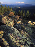 Lichen Covered on Boulders on Continental Divide, Wyoming, USA Photographic Print by Scott T. Smith