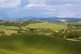 Rolling Hills of Spring Wheat Fields, Tuscany, Italy Photographic Print by Terry Eggers