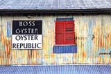 Old Tin Building with Red Shutters, Apalachicola, Florida, USA Photographic Print by Joanne Wells
