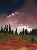 View of Mt. Rainier National Park, Washington, USA Photographic Print by Stuart Westmorland