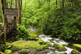 Tub Mill, Roaring Fork Creek, Great Smoky Mountains National Park, Tennessee, USA Photographic Print