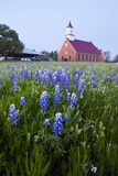 Art Methodist Church and Bluebonnets Near Mason, Texas, USA Photographic Print by Larry Ditto