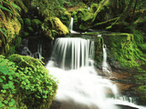 View of Waterfall at Willamette National Forest, Oregon, USA Photographic Print by Stuart Westmorland