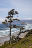 View of Haystack Rock and Cannon Beach, from Highway 101, Oregon, USA Photographic Print by Jamie & Judy Wild