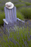 Garden, Adirondack Chair and Straw Hat, Lavender Festival, Sequim, Washington, USA Fotografie-Druck von John & Lisa Merrill