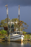 Shrimp Boat Docked at Harbor, Apalachicola, Florida, USA Photographic Print by Joanne Wells