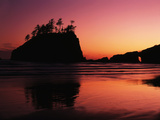 View of Second Beach, Olympic National Park, Washington State, USA Photographic Print by Stuart Westmorland