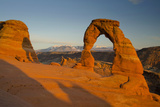 Delicate Arch, Arches National Park, Utah, USA Photographic Print by Roddy Scheer