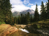 View of Mountain Stream, Glacier National Park, Montana, USA Photographic Print by Adam Jones