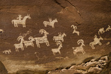 Ute Petroglyphs, Arches National Park, Utah, USA Photographic Print by Roddy Scheer