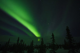 Northern Lights in the Alaska Sky, Alaska, USA Photographic Print by Terry Eggers