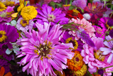 Bouquet of Colorful Flowers at a Farmers' Market, Savannah, Georgia, USA Photographic Print by Joanne Wells