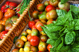 Tomatoes and Basil at Farmers' Market, Savannah, Georgia, USA Photographic Print by Joanne Wells