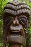 Tiki, Kula Botanical Garden, Upcountry, Maui, Hawaii, USA Photographic Print by Douglas Peebles