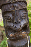 Tiki, Kula Botanical Garden, Upcountry, Maui, Hawaii, USA Photographic Print by Douglas Peebles