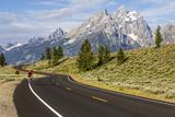 Road Biking in Grand Teton National Park, Wyoming, USA Photographic Print by Chuck Haney