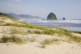 Cannon Beach and Haystack Rock, Oregon, USA Photographic Print by Jamie & Judy Wild