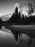 El Capitan Reflected in Merced River, Yosemite National Park, California, USA Fotografisk tryk af Adam Jones