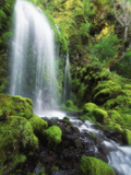 View of Waterfall, Columbia River Gorge, Mt Hood National Forest, Oregon, USA Photographic Print by Stuart Westmorland