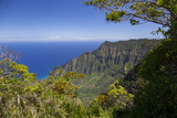 Kalalau Lookout, Kokee State Park, Kauai, Hawaii, USA Photographic Print by Douglas Peebles