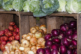 Fresh Colorful Vegetables at a Farmers' Market, Savannah, Georgia, USA Photographic Print by Joanne Wells