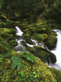View of Waterfall at Detroit Lake, Willamette National Forest, Oregon, USA Photographic Print by Stuart Westmorland