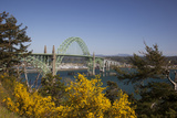 Yaquina Bay Bridge on Highway 101, Newport, Oregon, USA Photographic Print by Jamie & Judy Wild