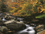 Oconaluftee River, Great Smoky Mountains National Park, North Carolina, USA Photographic Print by Adam Jones